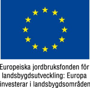 cropped-EU-flaggaEuropeiskajordbruksfondenfärg.jpg